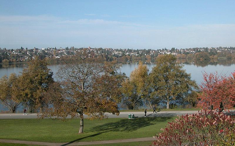 Green Lake Seattle Real Estate Real Estate Market